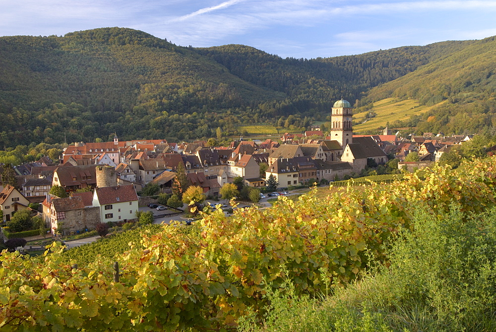 Kaysersberg from the vineyards, Haut Rhin, Alsace, France, Europe - 770-1750