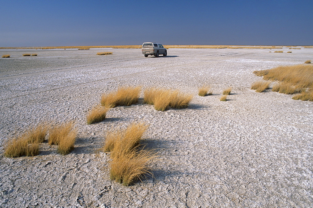 A 4x4 in the salt pans of Makgadikgadi Pan National Park, Makgadikgadi Pan, the largest salt flat complex in the world covering 16000 square kilometers, central Botswana, Africa - 770-1758