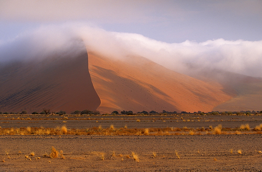 Early morning mist on red sand dunes rising to 300m, in Sossusvlei valley, Namib-Naukluft Park, Namibia, Africa - 770-1770