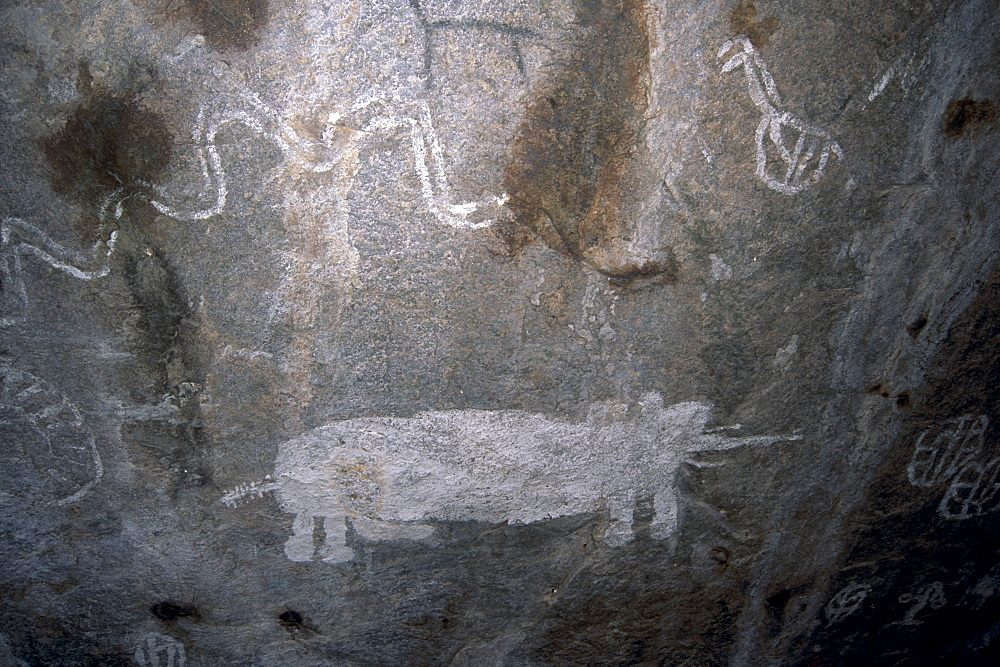 Rock art, white paintings, elephant and rain snake, Tsodilo Hills, UNESCO World Heritage Site, Ngamiland, Botswana, Africa - 770-1791