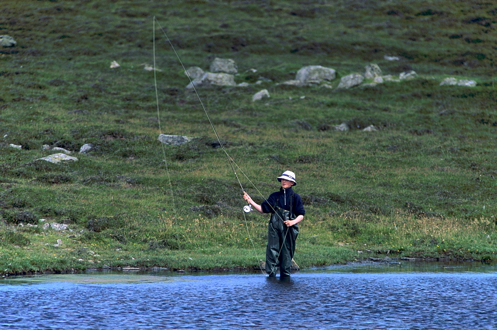 Fly fishing for trout in a loch, Shetland Islands, Scotland, United Kingdom, Europe