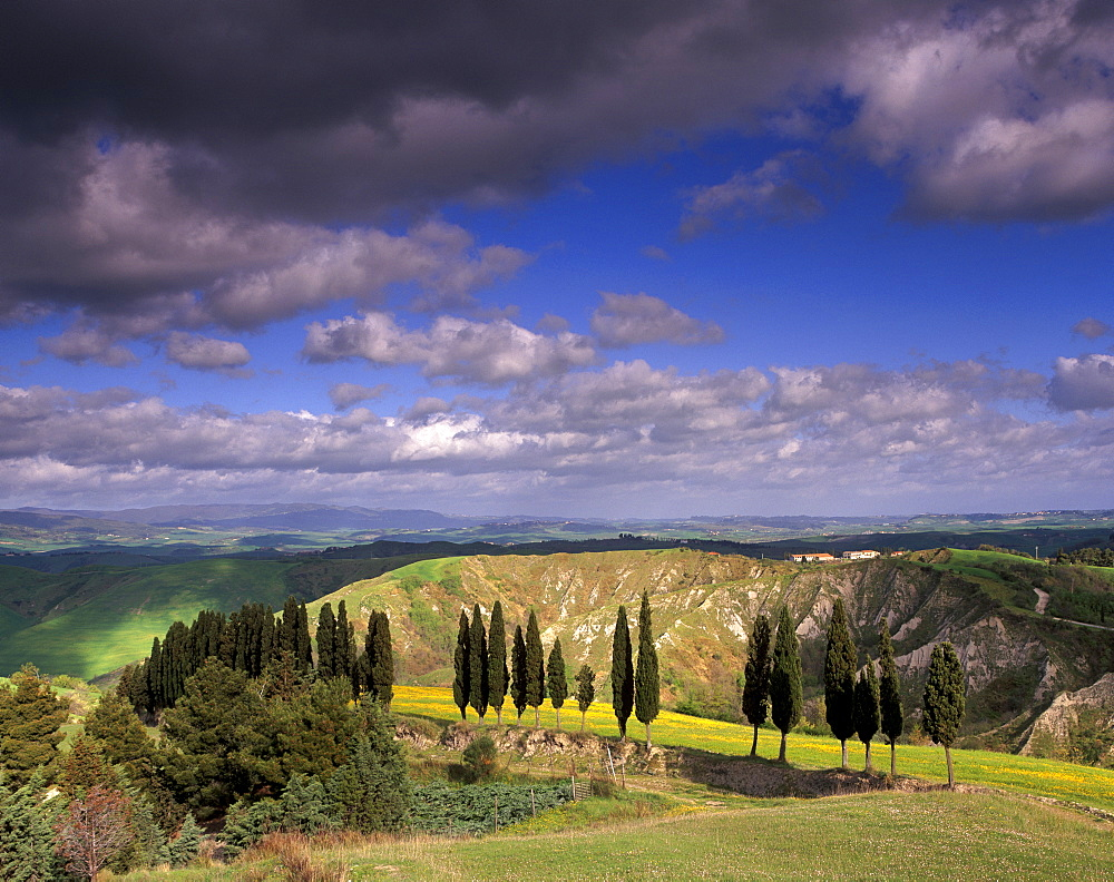 Landscape typical of the region, with cypress trees and spectacular landslides called locally balze, Volterra, Tuscany, Italy, Europe