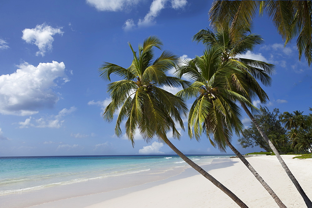 White sand beach, Bridgetown, Barbados, West Indies, Caribbean, Central America