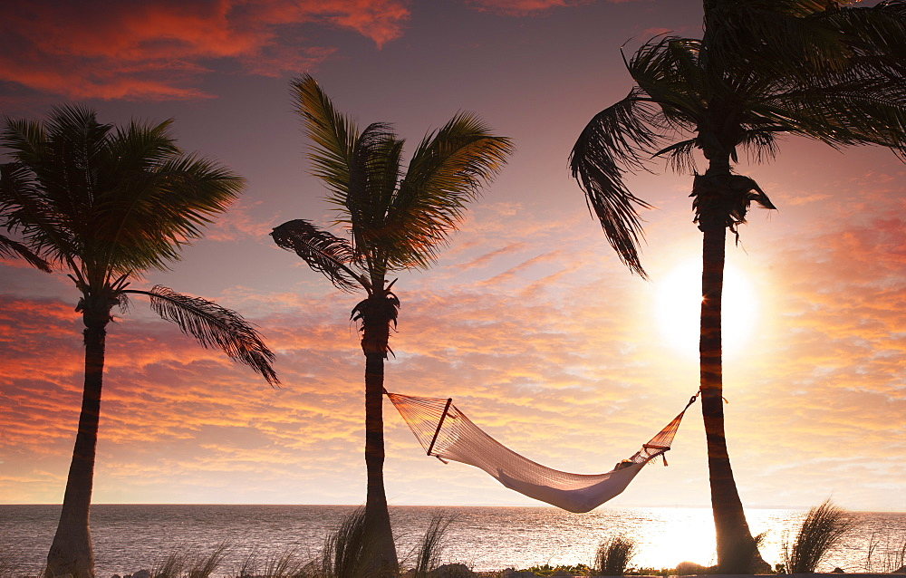 Woman in a hammock on the beach, Florida, United States of America, North America