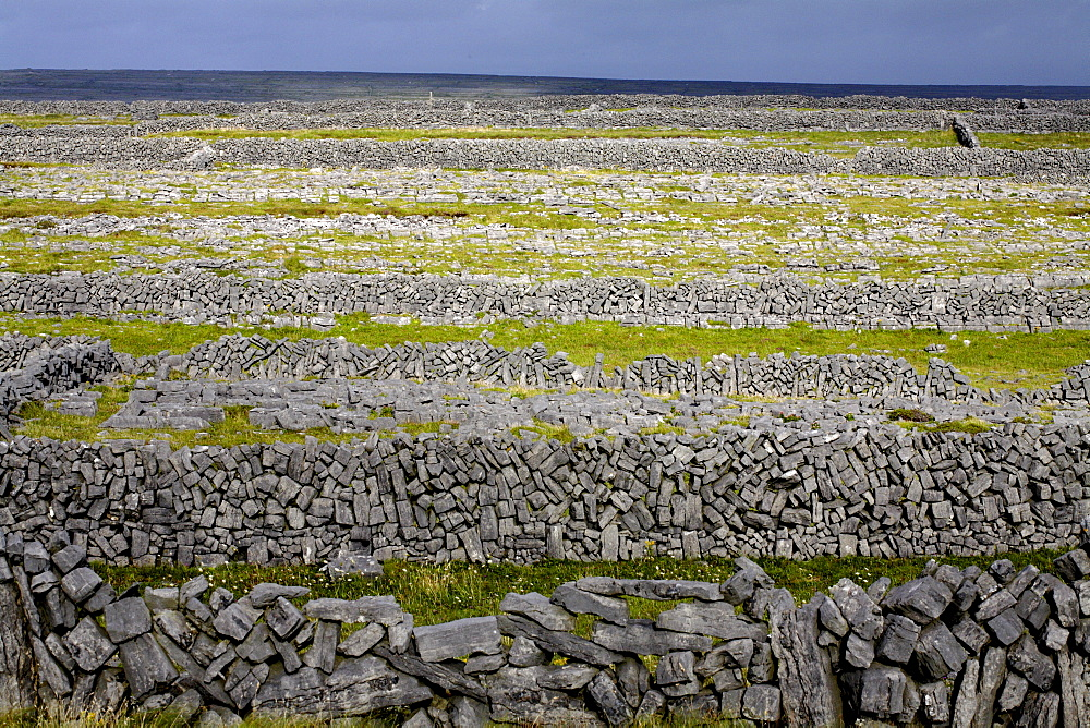 Stone walls on Inis Mor (Inishmore), Aran Islands, Republic of Ireland, Europe