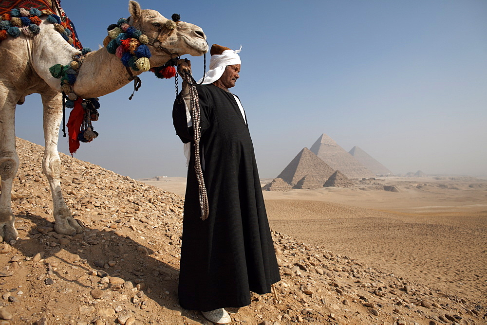 A Bedouin guide with his camel, overlooking the Pyramids of Giza, Cairo, Egypt, North Africa, Africa