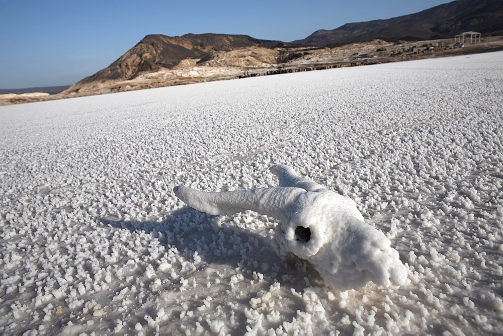 The lowest point on the African continent and the most saline body of water on earth, Lac Assal, Djibouti, Africa