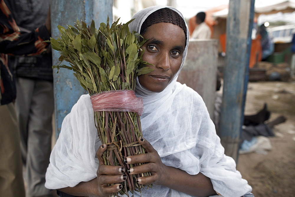 A woman selling khat (qat) (chat) in the city of Hargeisa, capital of Somaliland, Somalia, Africa