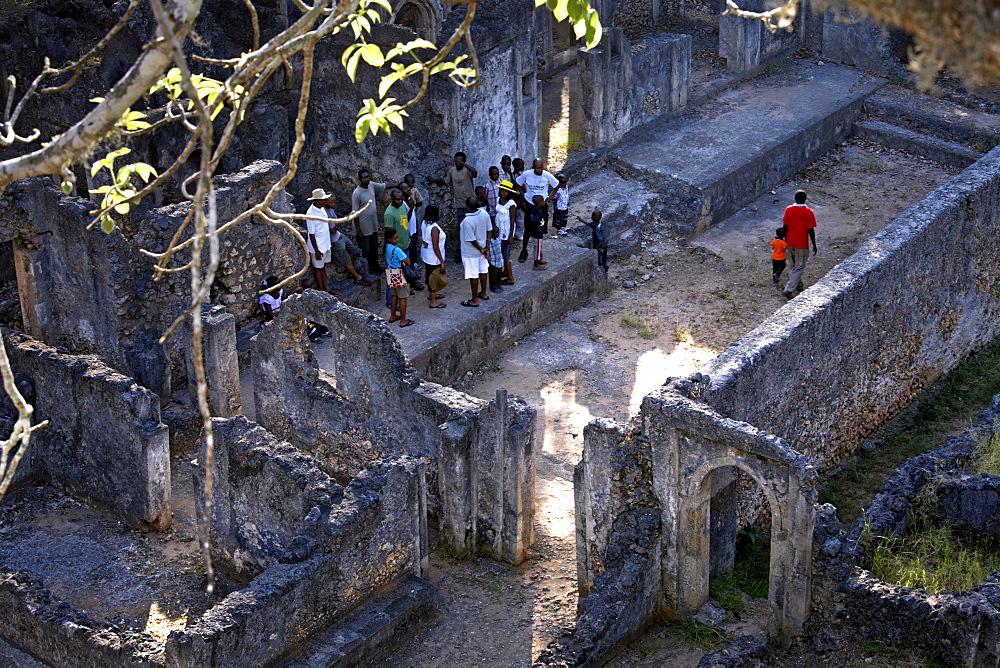 Gedi ruins, Malindi, Kenya, East Africa, Africa - 774-733