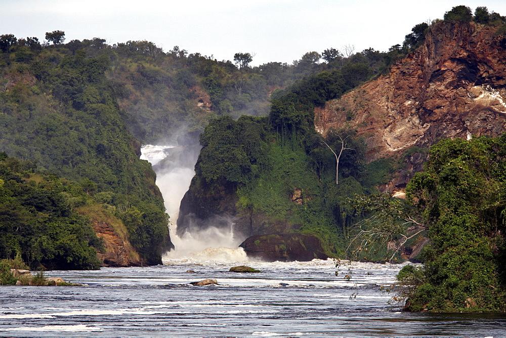 Murchison Falls, Murchison National Park, Uganda, East Africa, Africa - 774-750
