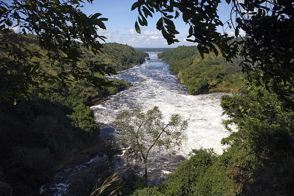 Murchison Falls, Murchison National Park, Uganda, East Africa, Africa - 774-754