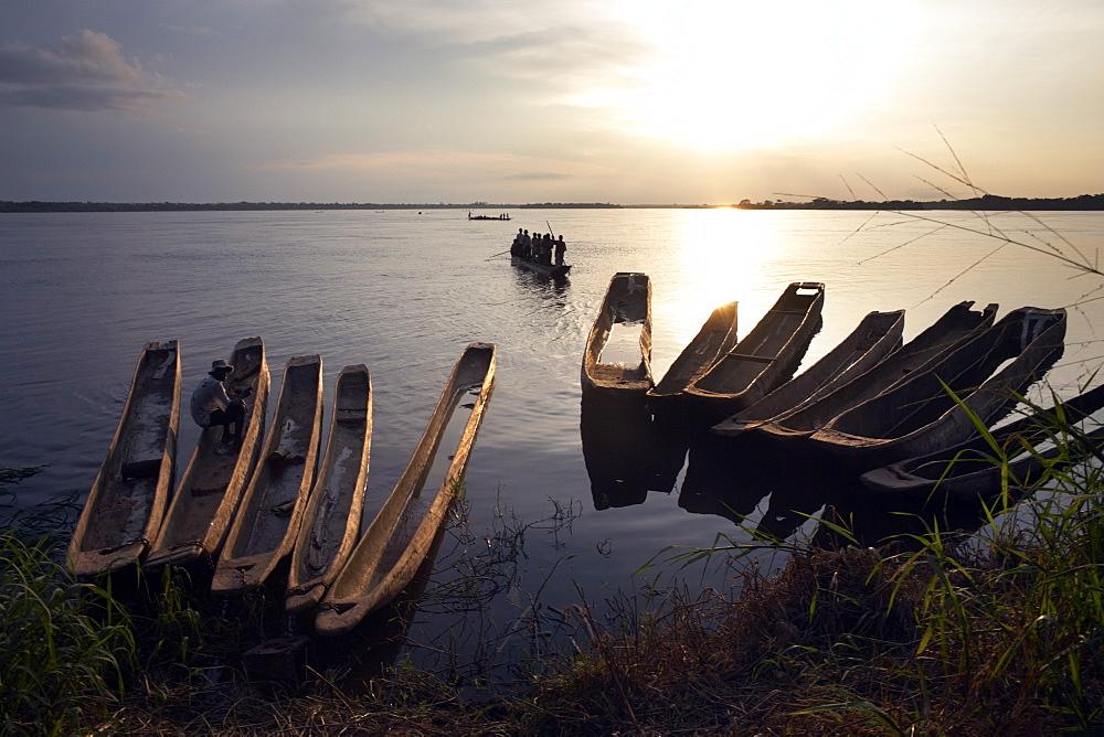 Dugout canoes (pirogues) on the Congo River, Yangambi, Democratic Republic of Congo, Africa - 774-818