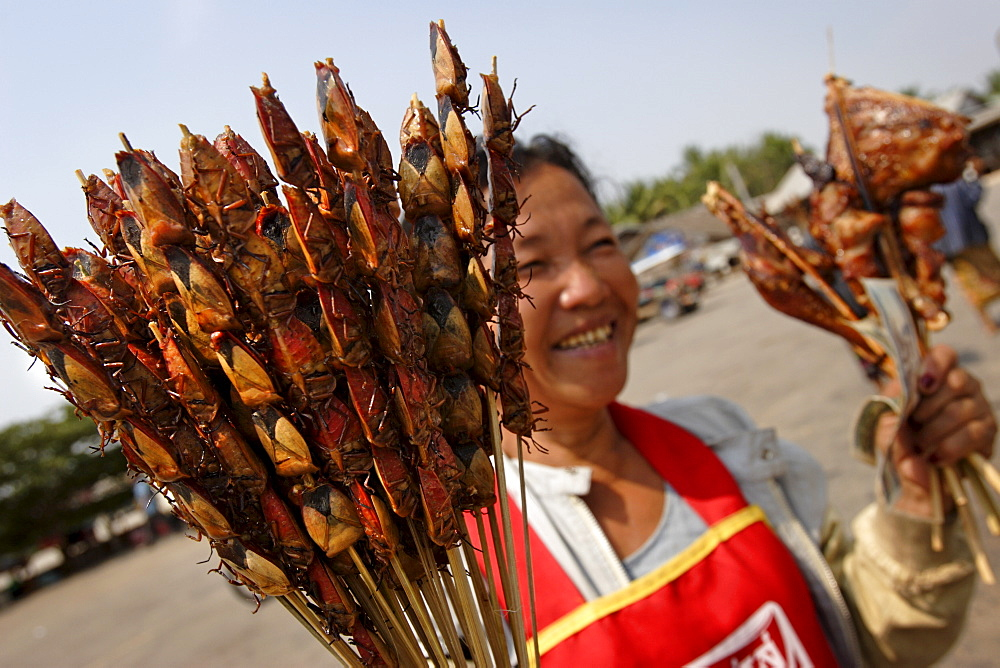 Woman selling bug skewers at a bus stop, Savannakhet province, Laos, Indochina, Southeast Asia, Asia