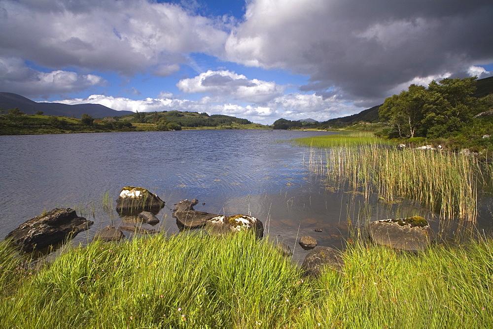 Looscaunagh Lake, Killarney National Park, County Kerry, Munster, Republic of Ireland, Europe