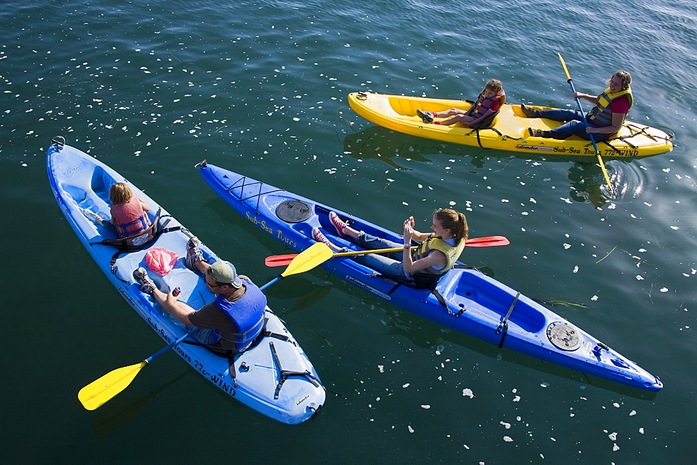 Kayak rental, Embarcadero, City of Morro Bay, San Luis Obispo County, California, United States of America, North America - 776-2021
