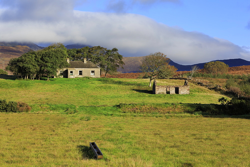 Cottage ruins near Mulranny, County Mayo, Connaught (Connacht), Republic of Ireland, Europe