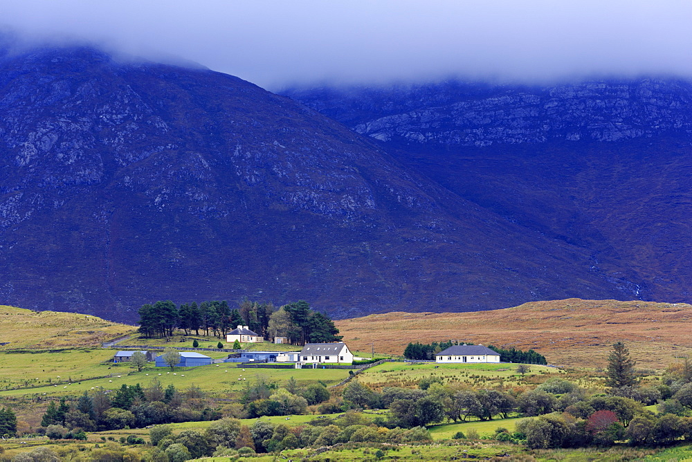 Mountains and rural landscape, Leenane, County Mayo, Connaught (Connacht), Republic of Ireland, Europe