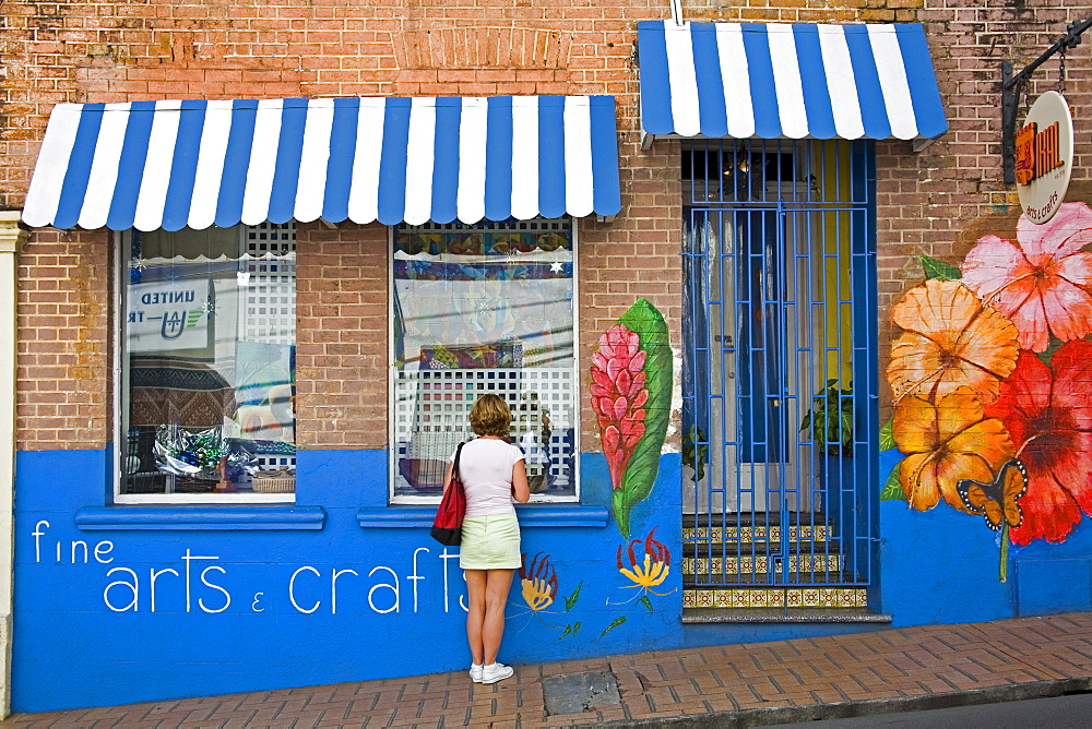 Craft store on Young Street, St. George's, Grenada, Windward Islands, Lesser Antilles, West Indies, Caribbean, Central America - 776-404
