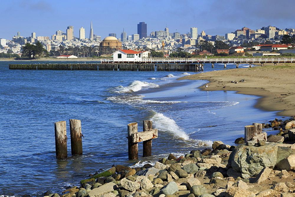 Crissy Field, San Francisco, California, United States of America, North America