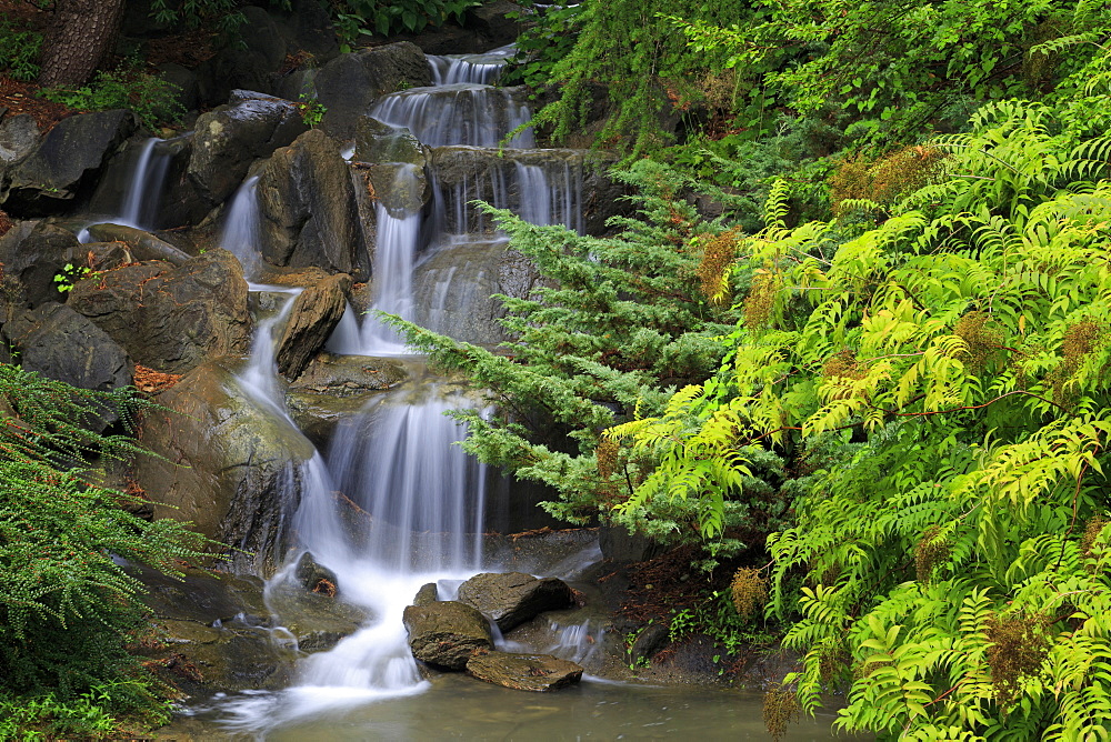 Waterfall, VanDusen Gardens, Vancouver, British Columbia, Canada, North America