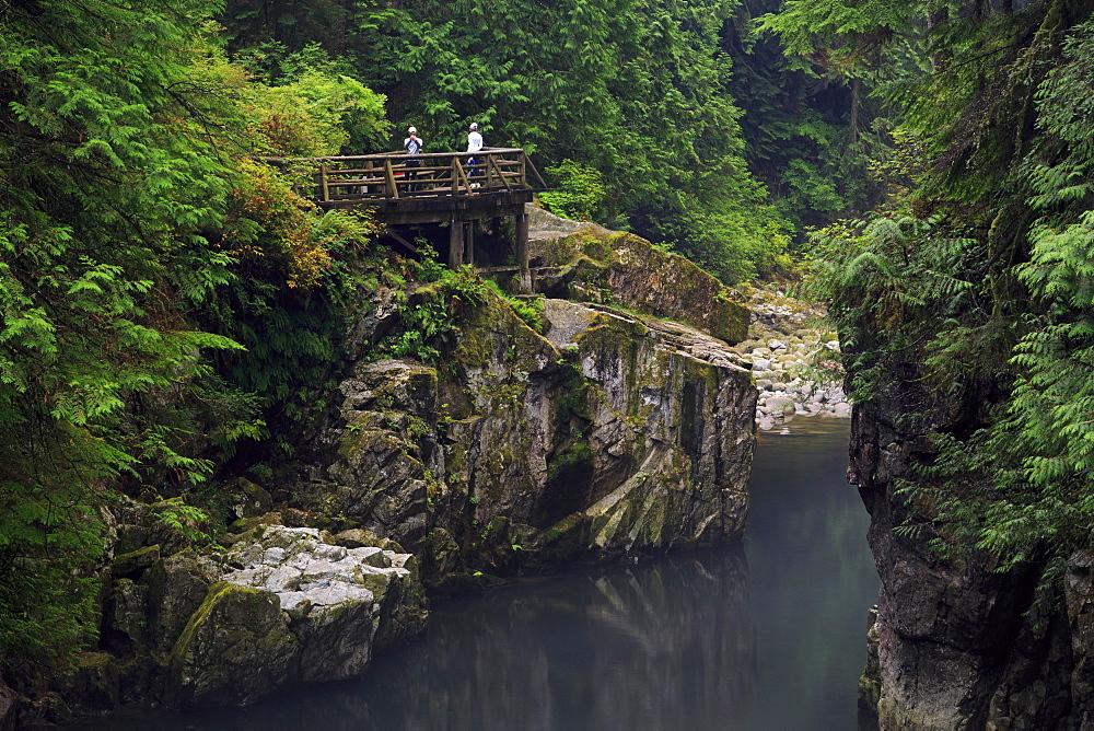 Capilano River Regional Park, Vancouver, British Columbia, Canada, North America