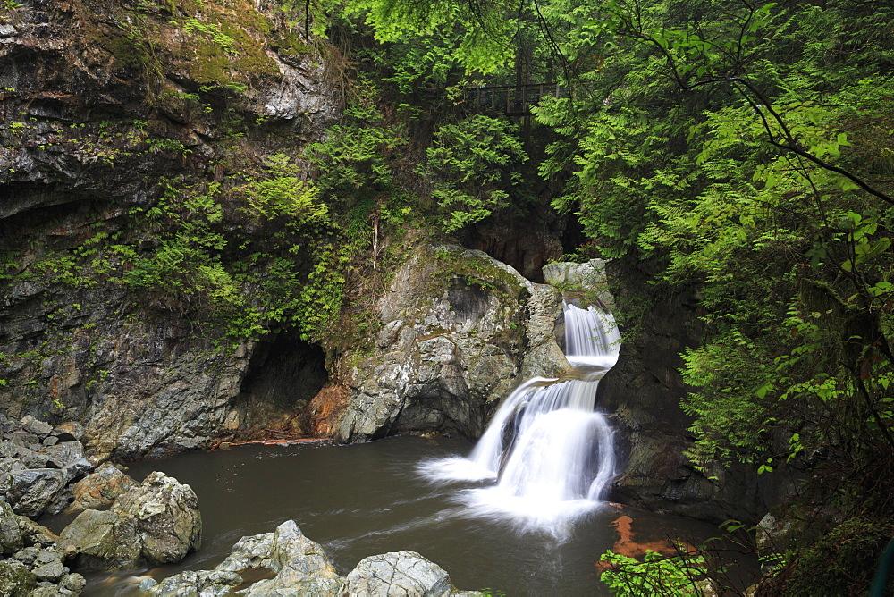 Twin Falls, Lynn Canyon Park, Vancouver, British Columbia, Canada, North America