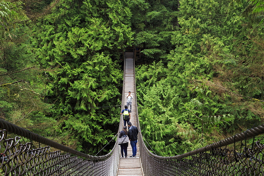 Suspension bridge, Lynn Canyon Park, Vancouver, British Columbia, Canada, North America