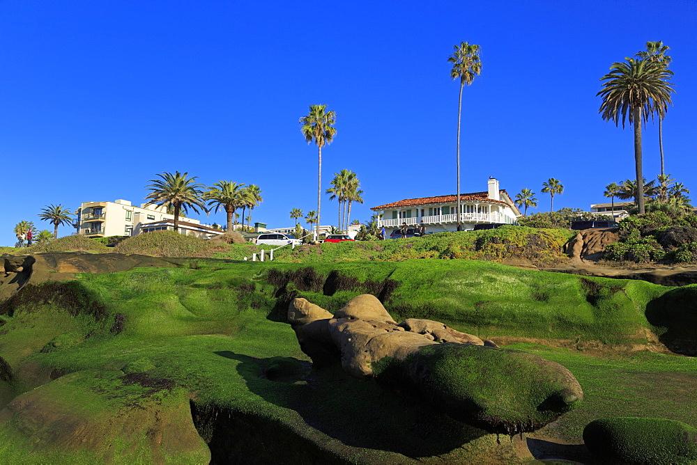 Rock formations, La Jolla, San Diego, California, United States of America, North America