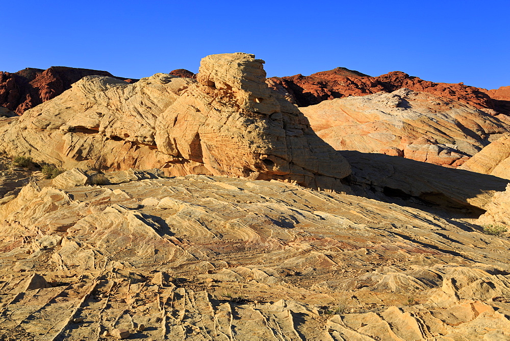 White Domes area,Valley of Fire State Park, Overton, Nevada, USA