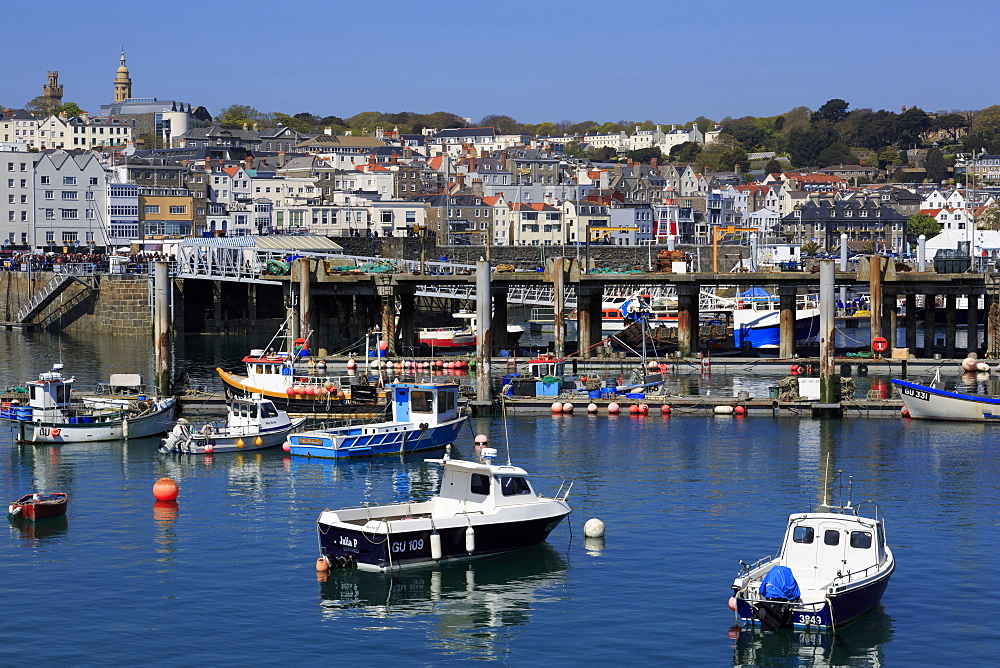 Albert Marina, St. Peter Port, Guernsey, Channel Islands, Europe - 776-5039