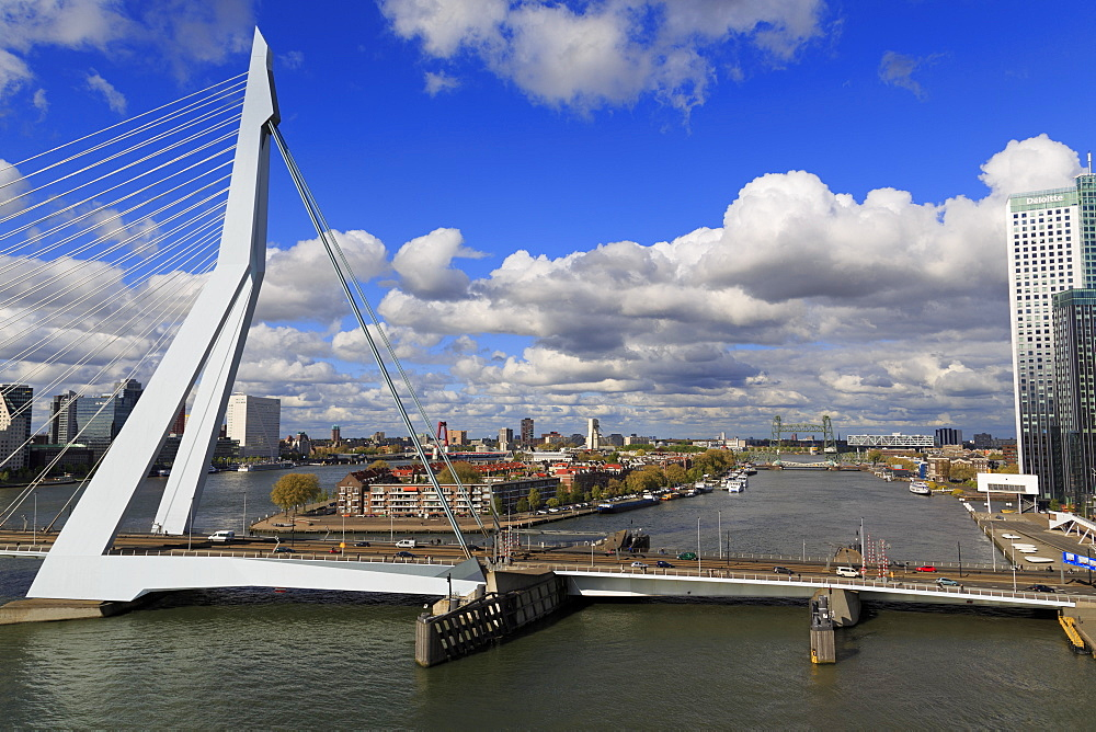 Erasmus Bridge, Rotterdam, South Holland, Netherlands, Europe