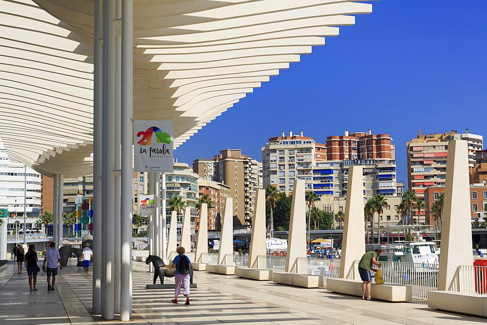Paseo De La Pergola, Malaga City, Andalusia, Spain, Europe