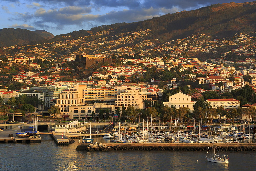 Funchal Port, Madeira Island, Portugal, Europe