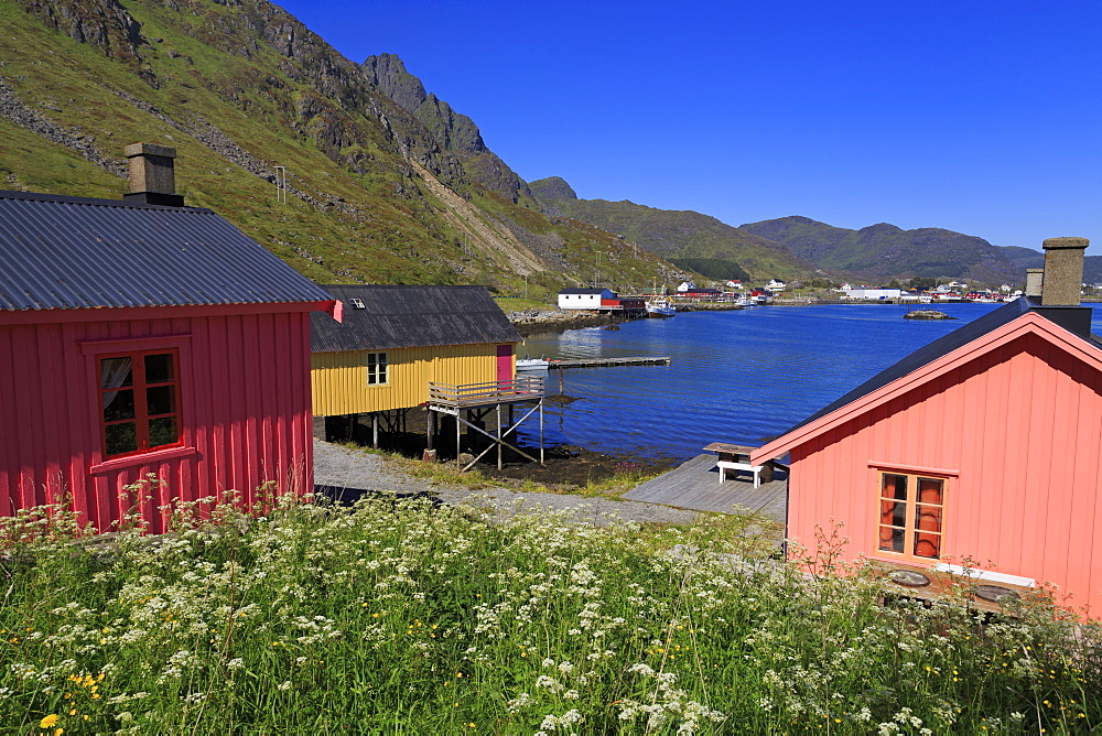Fishing huts (Rorbuer), Ballstad Fishing Village, Lofoten Islands, Nordland County, Arctic, Norway, Scandinavia, Europe