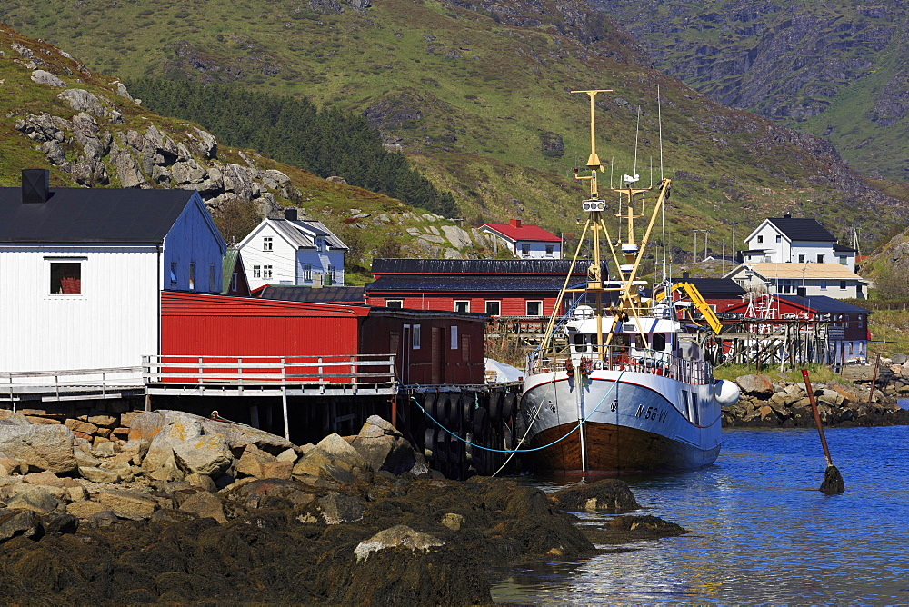 Fish factory, Ballstad Fishing Village, Lofoten Islands, Nordland County, Arctic, Norway, Scandinavia, Europe
