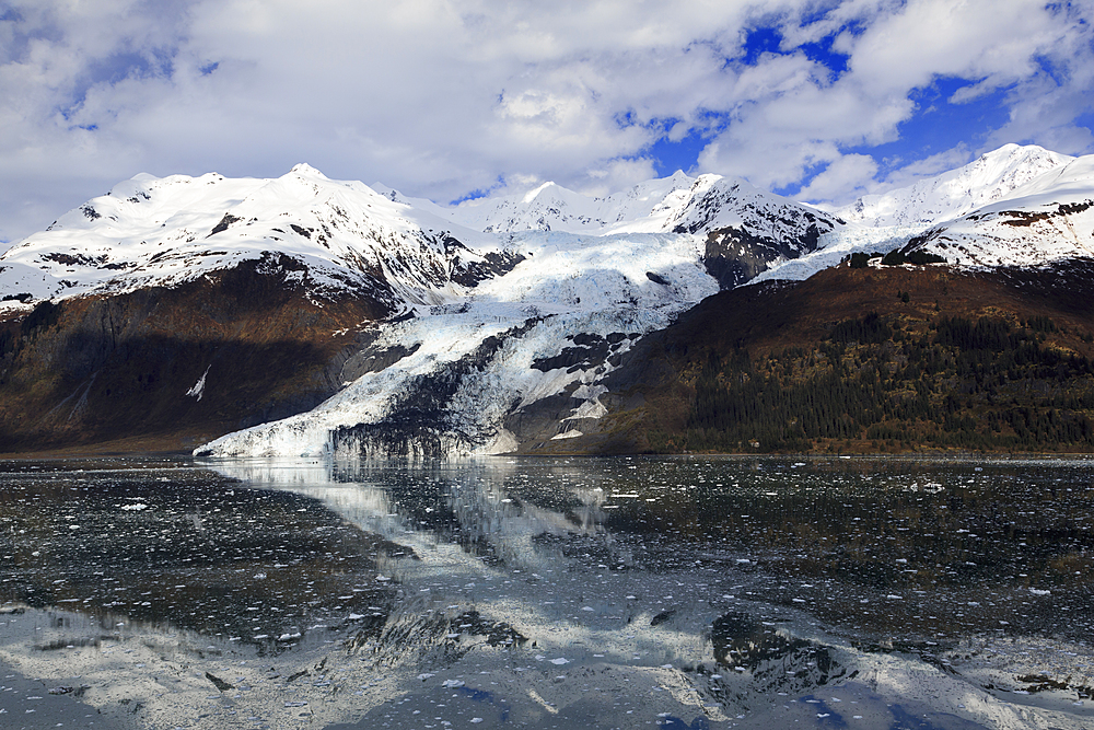 Glacier in College Fjord, Southeast Alaska, United States of America, North America