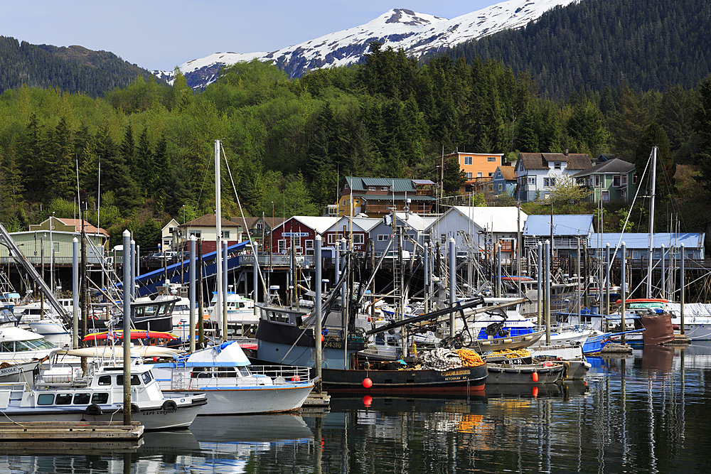 Thomas Basin boat harbor, Ketchikan, Alaska, United States of America, North America