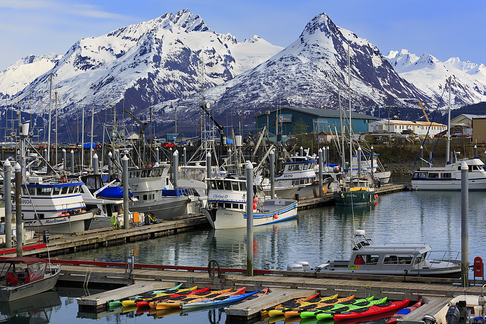 Small Boat Harbor, Valdez, Prince William Sound, Alaska, United States of America, North America