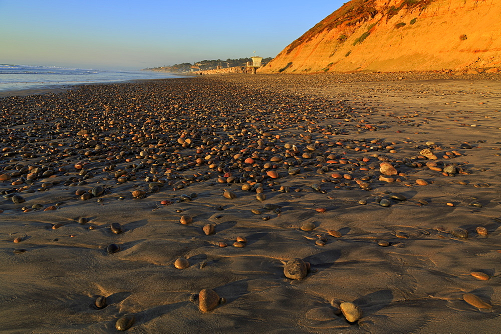 Torrey Pines State Beach, Del Mar, San Diego County, California, United States of America, North America