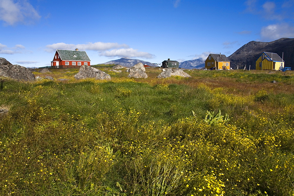 Colourful houses, Port of Nanortalik, Island of Qoornoq, Province of Kitaa, Southern Greenland, Kingdom of Denmark, Polar Regions