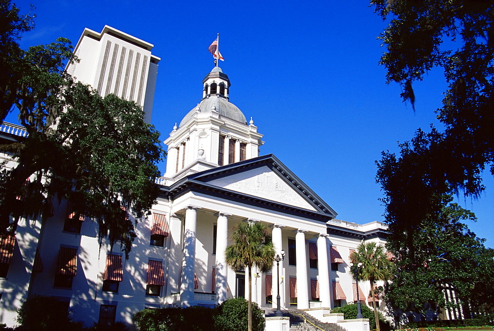 New and old State Capitol Buildings, Tallahassee, Florida, United States of America, North America