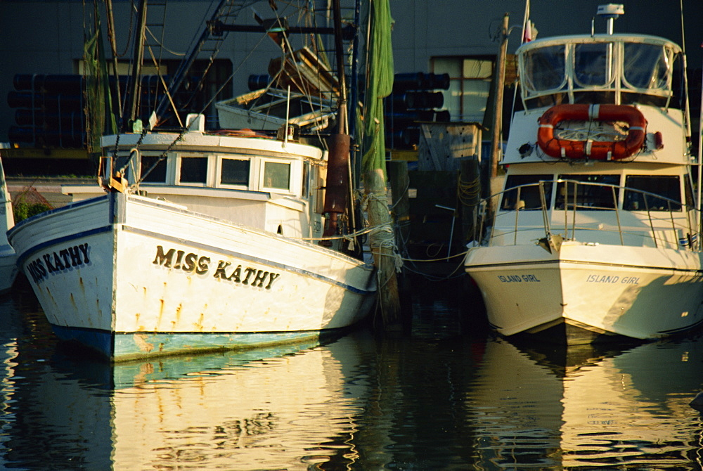 Fishing boats, Galveston Harbor, Texas, United States of America, North America