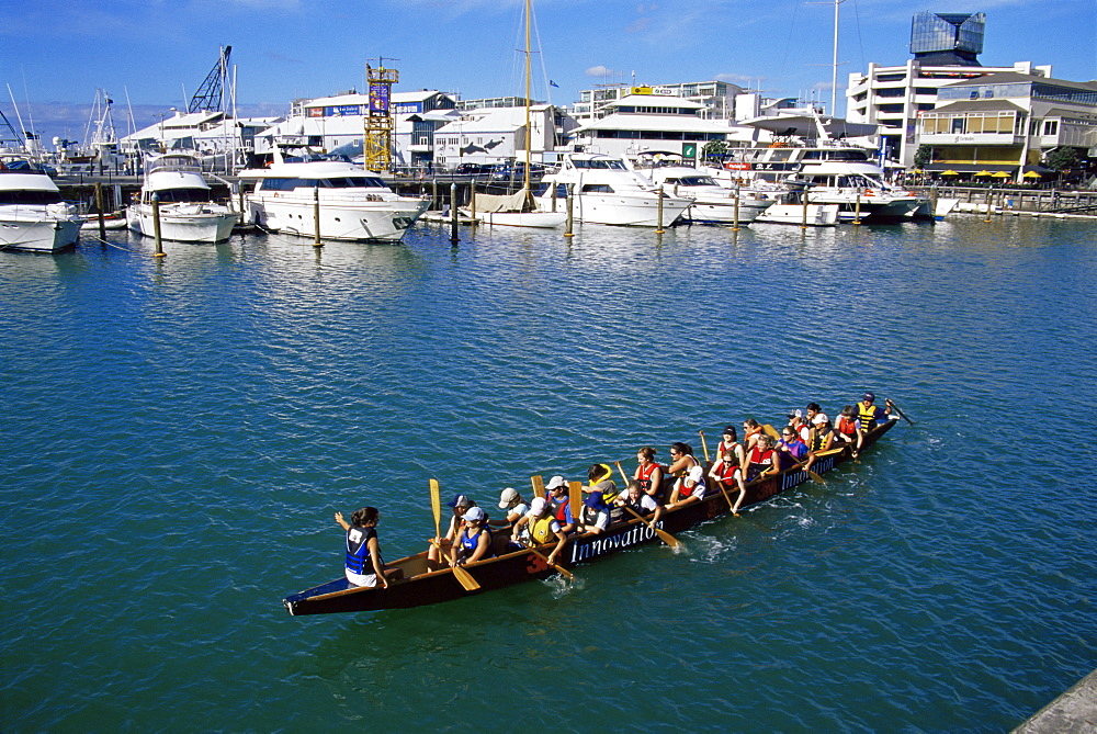 Rowing team, Viaduct Harbour, Auckland, North Island, New Zealand, Pacific