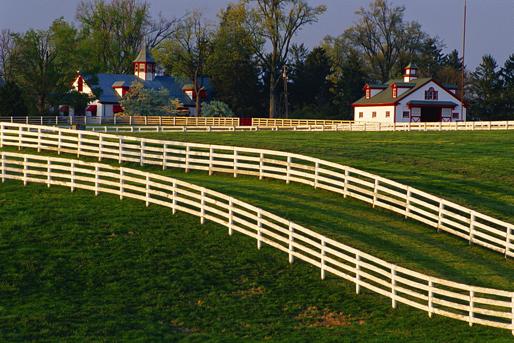 Fences at Calumet Farm, Lexington, Kentucky, United States of America, North America