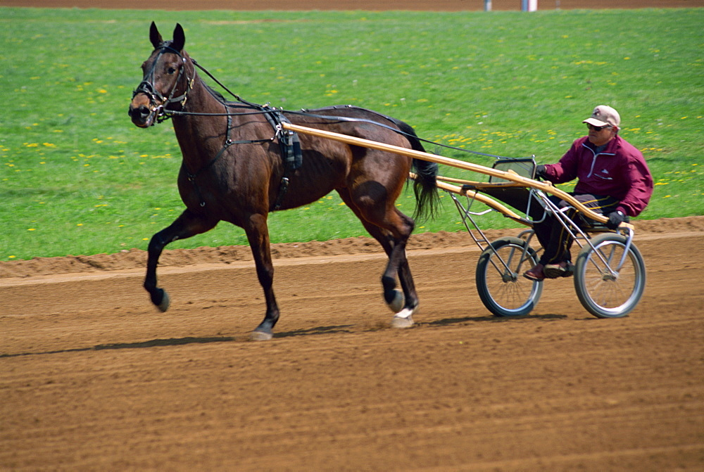 Red Mile Harness Track, Lexington, Kentucky, United States of America, North America