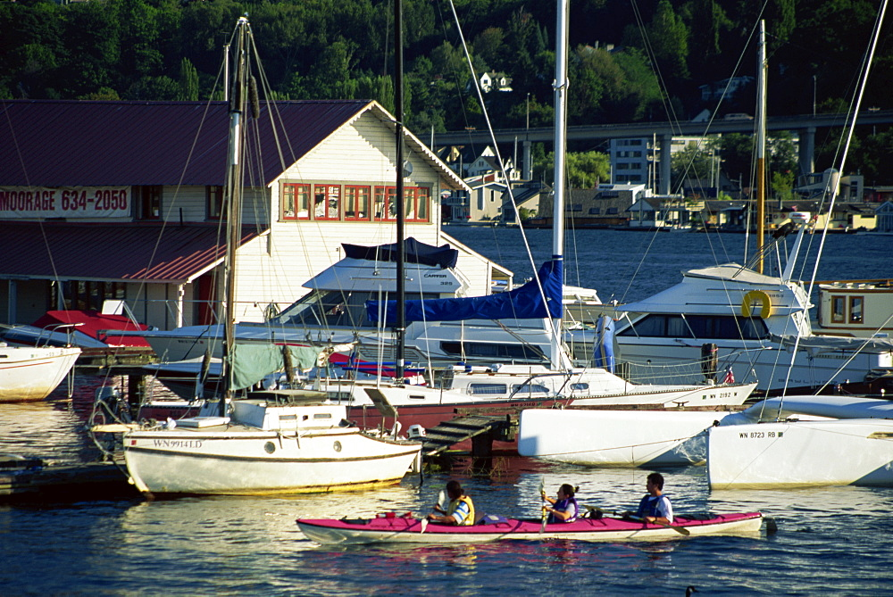 Marina, Portage Bay, Seattle, Washington state, United States of America, North America