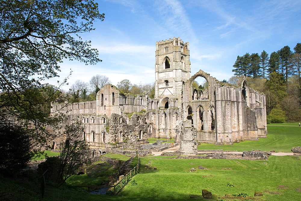 Rievaulx Abbey, North Yorkshire, Yorkshire, England, United Kingdom, Europe - 783-140