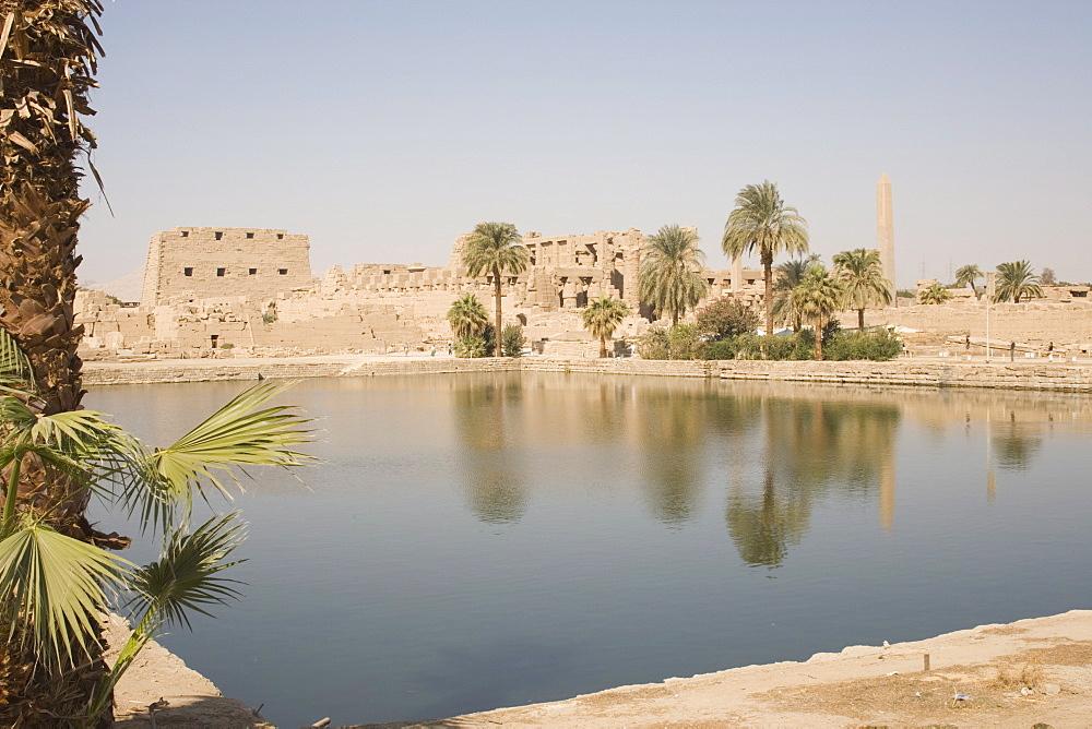 Sacred Lake, Temples of Karnak, Karnak, near Luxor, Thebes, UNESCO World Heritage Site, Egypt, North Africa, Africa - 783-31