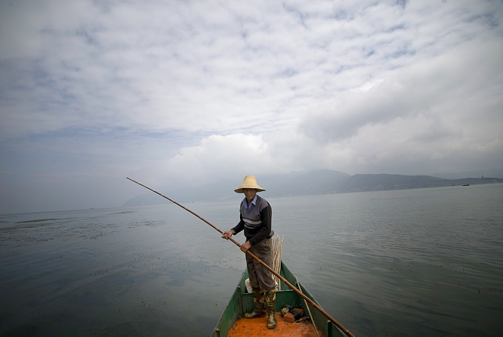 Cormorant fisherman, Erhai Lake, Dali, Yunnan, China, Asia - 784-21