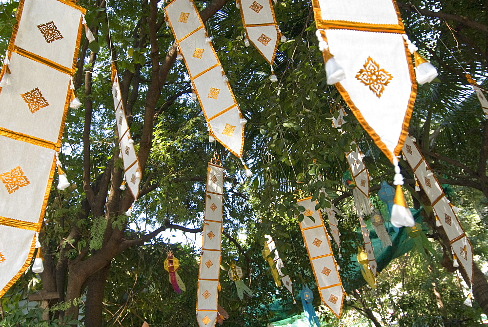 Buddhist flags in temple trees, Chiang Mai, Thailand, Southeast Asia, Asia - 784-216